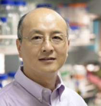 photo of Dr. Ruiming Xu
